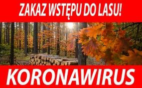 Uwaga! - zakaz wstępu do lasu!